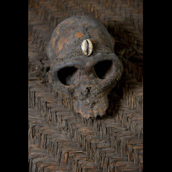 Bouclier en vannerie et crâne de singe - Pygmées Baka - Cameroun / Gabon