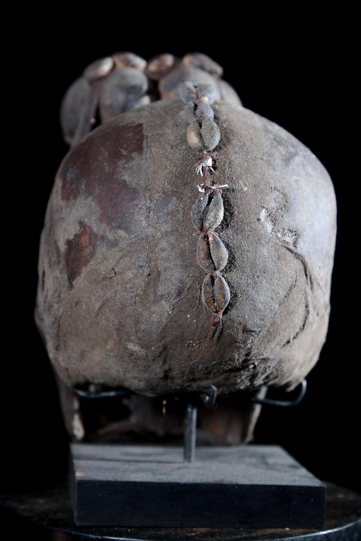 Crane Humain Relique - Ethnie Ada / Fon - Benin