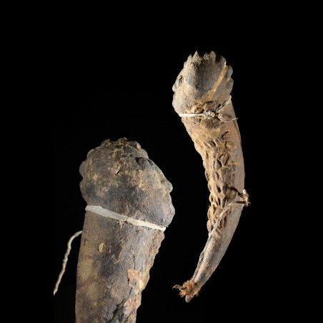 Fétiche zoomorphe Mossi - Burkina Faso