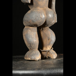 Singe Ngil - Bulu / Boulou - Cameroun