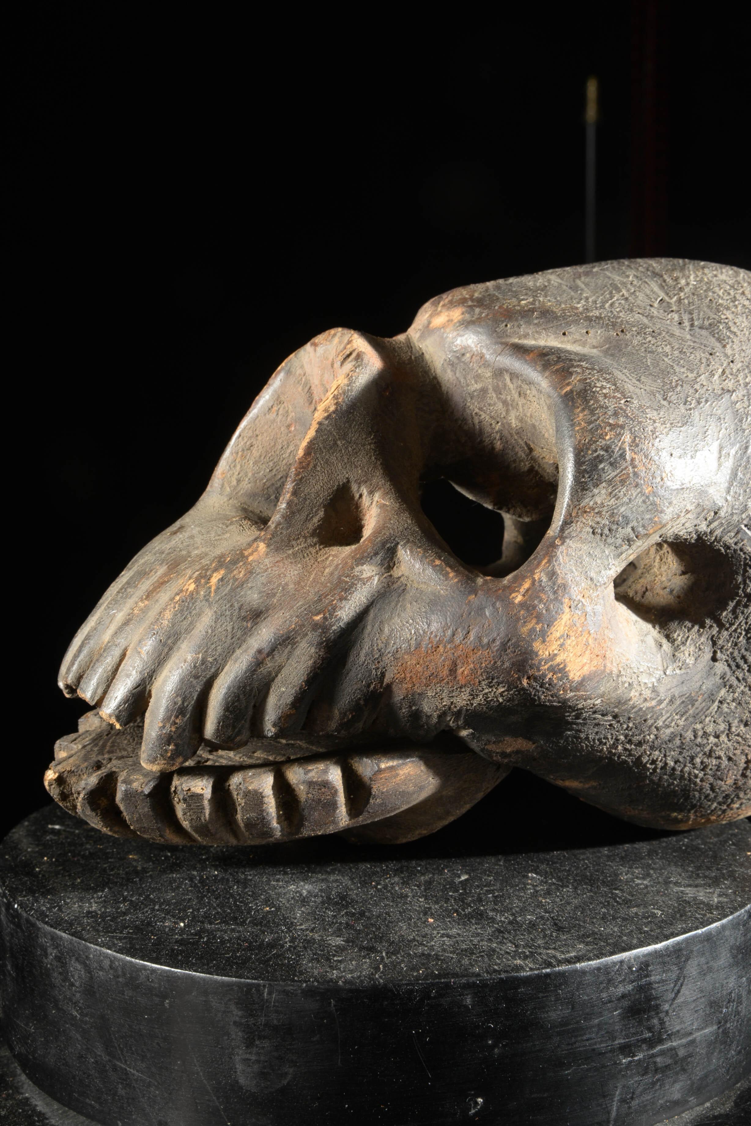 Crâne d'autel funéraire - Tiv - Nigeria