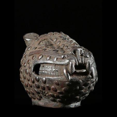 Leopard Royal Tete - Bini...