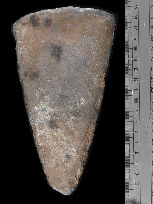 Hache polie en ardoise - Mauritanie - Neolithique Inferieur
