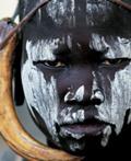 livre Guerriers d'Afrique